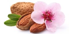 ALMOND FRAGRANCE | PARABEN FREE | PHTHALATE FREE | SOAP AND CANDLE COMPATIBLE
